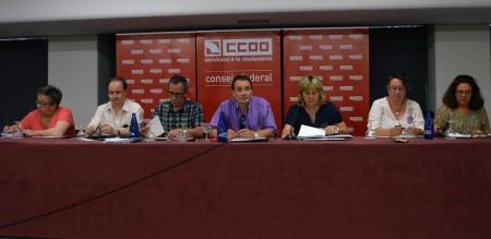 Consejo Federal de FSC-CCOO. Madrid, 25.06.15. Archivo FSC-CCOO